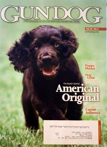 Gun Dog Magazine--New Puppy Edition