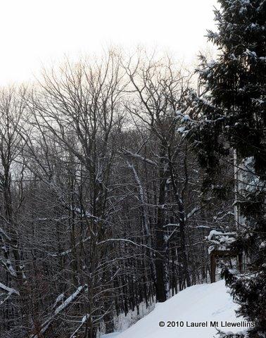 Snowy Weekend at Laurel Mt. Llewellins