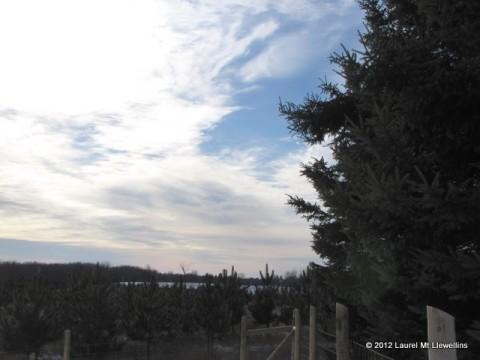 January 3rd, 2012 UP Sky
