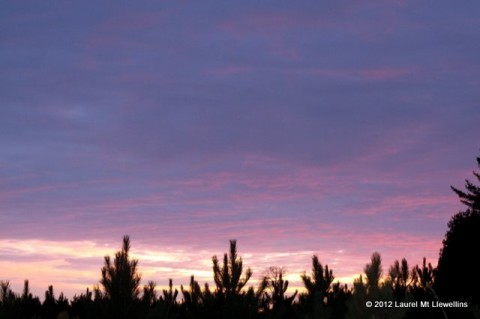 January 20th, 2012 Sunset
