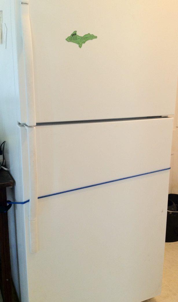 bungie cord the fridge
