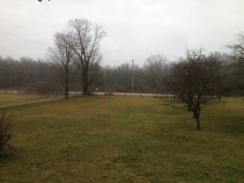 Gloomy, November Day