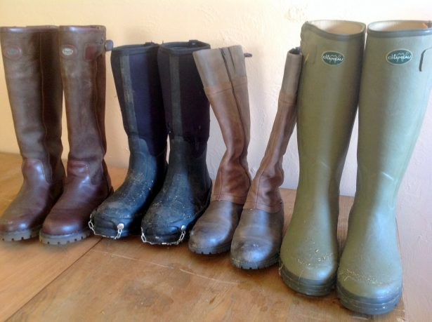 My collection of favorite upland hunting boots