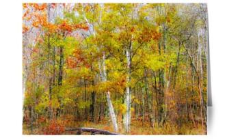 upland-woods