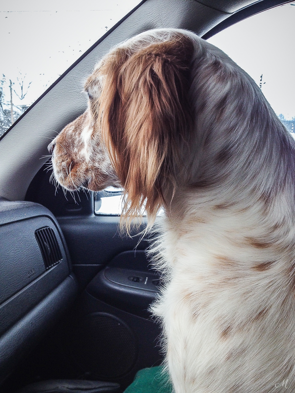 Nash was a great co-pilot