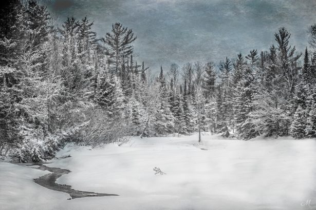 Northwoods Winter Scene