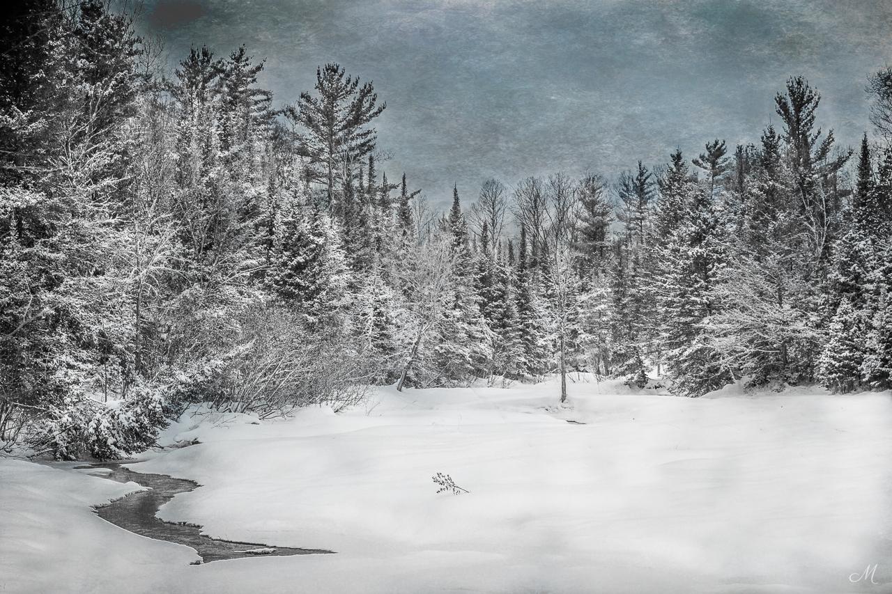 Northwoods Winter Scene