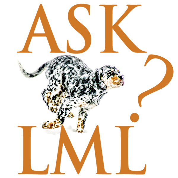 Ask Laurel Mt Llewellin Setters logo