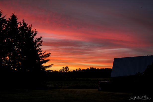 Beautiful sunset from the deck of the little farm.