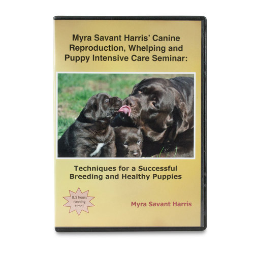 canine-reproduction-dvd